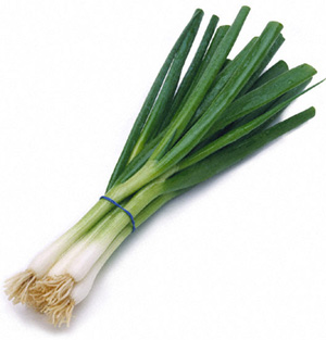 Fresh_Green_Onion.html