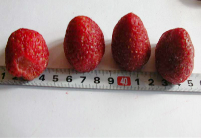 Freeze Dried Strawberries Whole
